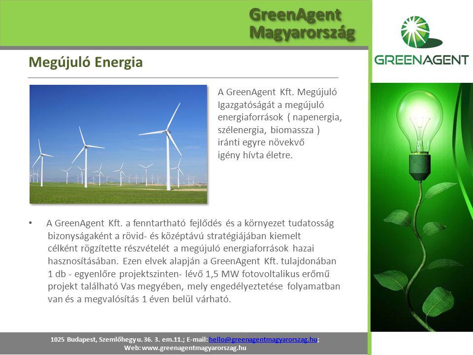 A GreenAgent Kft. Megújuló Igazgatóságát a megújuló energiaforrások ( napenergia, szélenergia, biomassza ) iránti egyre növekvő igény hívta életre. A