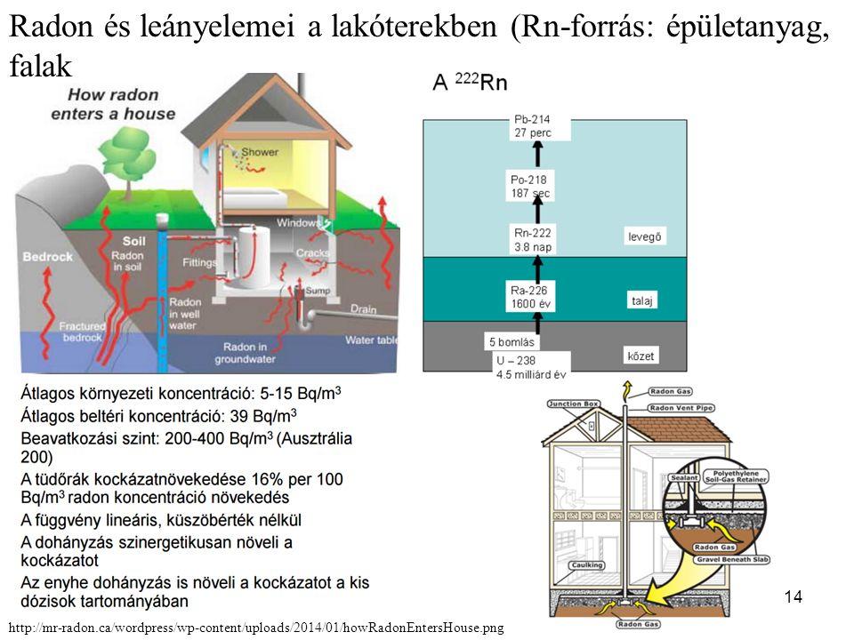 14 Radon és leányelemei a lakóterekben (Rn-forrás: épületanyag, falak http://mr-radon.ca/wordpress/wp-content/uploads/2014/01/howRadonEntersHouse.png