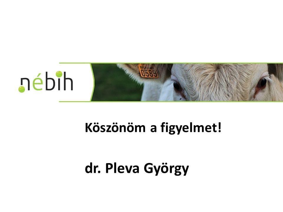 Köszönöm a figyelmet! dr. Pleva György