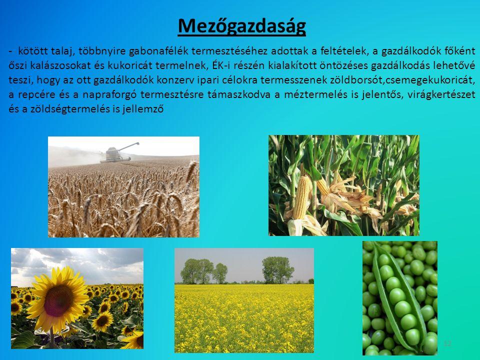 12 - kötött talaj, többnyire gabonafélék termesztéséhez adottak a feltételek, a gazdálkodók főként őszi kalászosokat és kukoricát termelnek, ÉK-i részén kialakított öntözéses gazdálkodás lehetővé teszi, hogy az ott gazdálkodók konzerv ipari célokra termesszenek zöldborsót,csemegekukoricát, a repcére és a napraforgó termesztésre támaszkodva a méztermelés is jelentős, virágkertészet és a zöldségtermelés is jellemző Mezőgazdaság