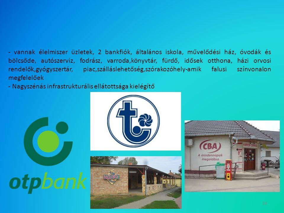 18 - vannak élelmiszer üzletek, 2 bankfiók, általános iskola, művelődési ház, óvodák és bölcsőde, autószerviz, fodrász, varroda,könyvtár, fürdő, idősek otthona, házi orvosi rendelők,gyógyszertár, piac,szálláslehetőség,szórakozóhely-amik falusi színvonalon megfelelőek - Nagyszénás infrastrukturális ellátottsága kielégítő