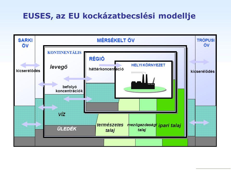 EUSES, az EU kockázatbecslési modellje water sediment natural soil agricultural soil HELYI KÖRNYEZET RÉGIÓ háttérkoncentáció befolyó koncentrációk levegő VÍZ természetes talaj mezőgazdasági talaj ipari talaj MÉRSÉKELT ÖV TRÓPUSIÖVSARKIÖV ÜLEDÉK kicserélődés KONTINENTÁLIS