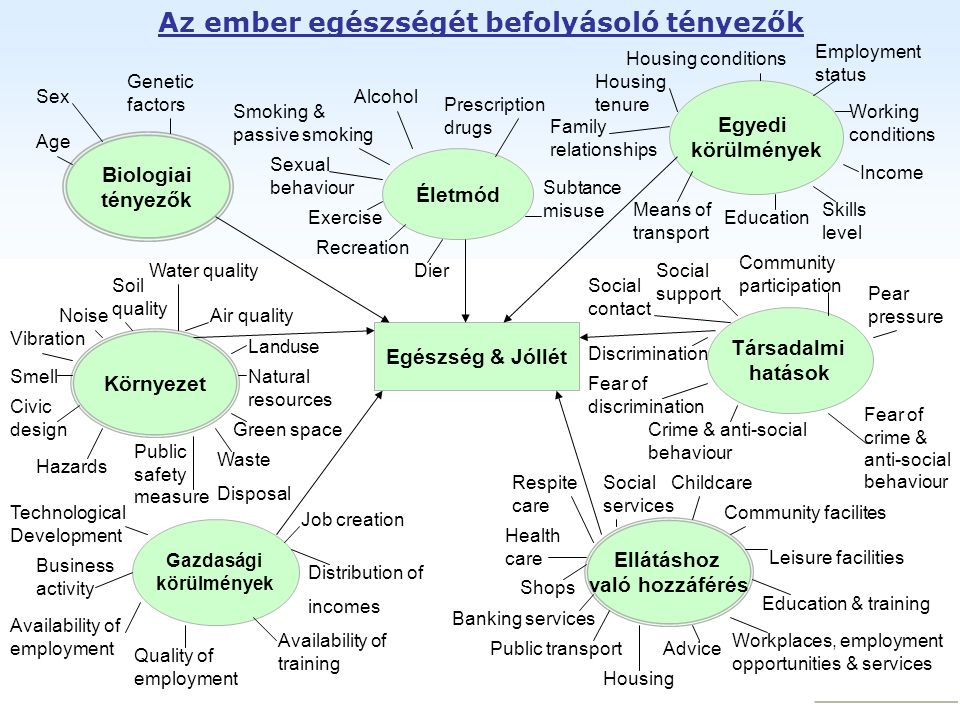 Az ember egészségét befolyásoló tényezők Egészség & Jóllét Életmód Egyedi körülmények Társadalmi hatások Biologiai tényezők Környezet Gazdasági körülm