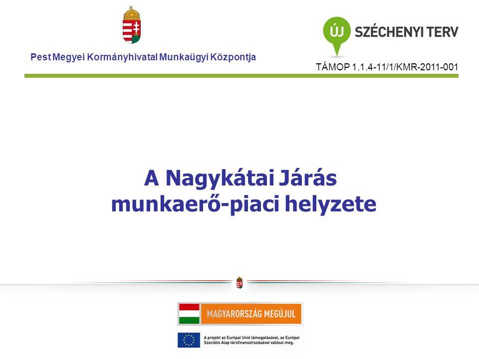 A Nagykátai Járás munkaerő-piaci helyzete Pest Megyei Kormányhivatal Munkaügyi Központja TÁMOP 1.1.4-11/1/KMR-2011-001