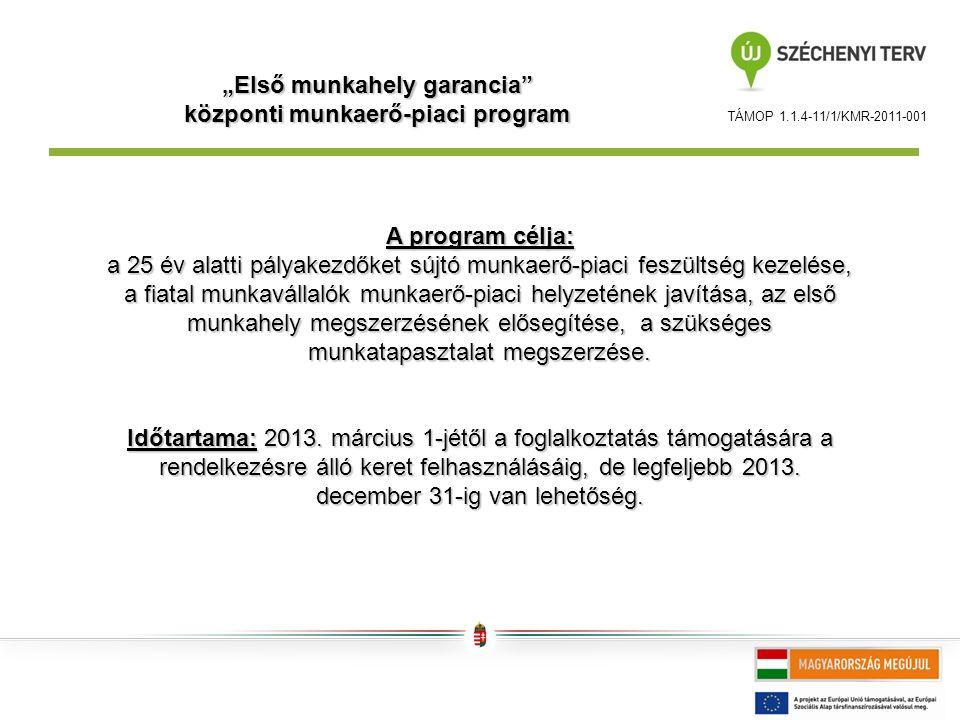 """TÁMOP 1.1.4-11/1/KMR-2011-001 """"Első munkahely garancia központi munkaerő-piaci program A program célja: a 25 év alatti pályakezdőket sújtó munkaerő-piaci feszültség kezelése, a fiatal munkavállalók munkaerő-piaci helyzetének javítása, az első munkahely megszerzésének elősegítése, a szükséges munkatapasztalat megszerzése."""