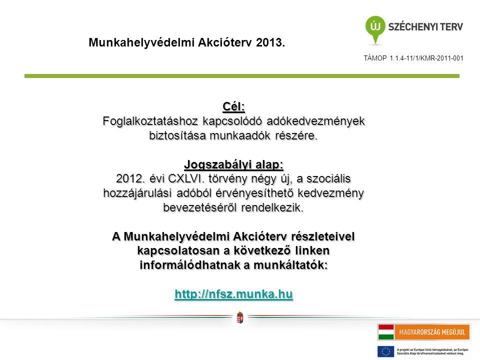 TÁMOP 1.1.4-11/1/KMR-2011-001 Munkahelyvédelmi Akcióterv 2013.