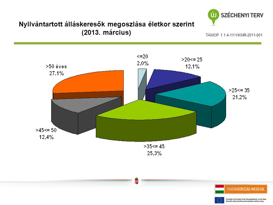 TÁMOP 1.1.4-11/1/KMR-2011-001 Nyilvántartott álláskeresők megoszlása életkor szerint (2013.
