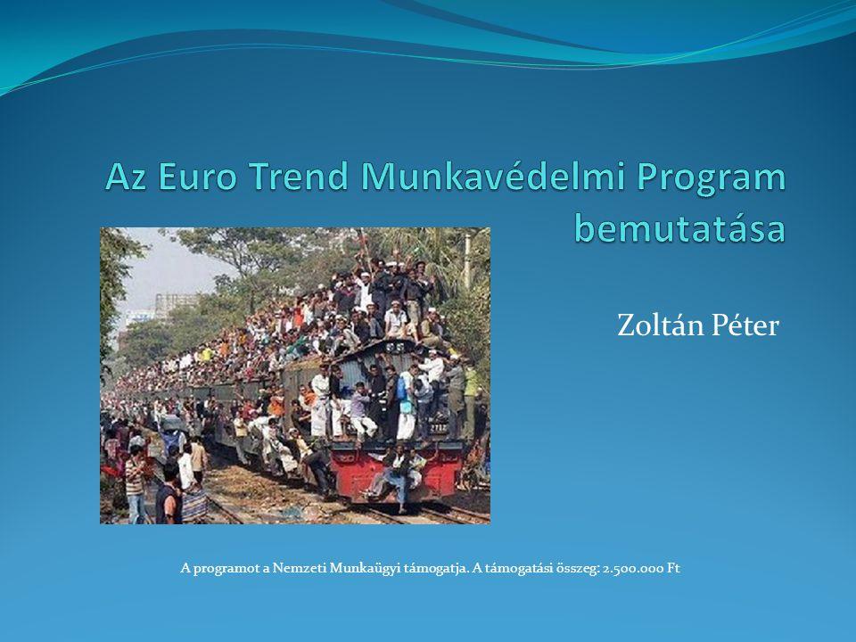 Zoltán Péter A programot a Nemzeti Munkaügyi támogatja. A támogatási összeg: 2.500.000 Ft