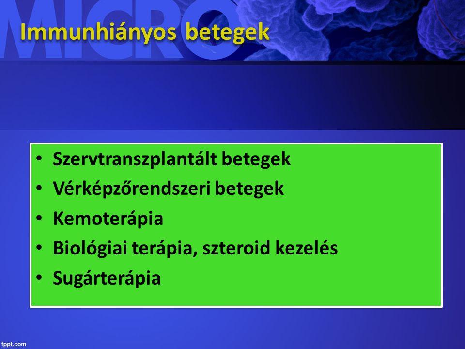 Immunhiányos betegek Szervtranszplantált betegek Vérképzőrendszeri betegek Kemoterápia Biológiai terápia, szteroid kezelés Sugárterápia Szervtranszplantált betegek Vérképzőrendszeri betegek Kemoterápia Biológiai terápia, szteroid kezelés Sugárterápia