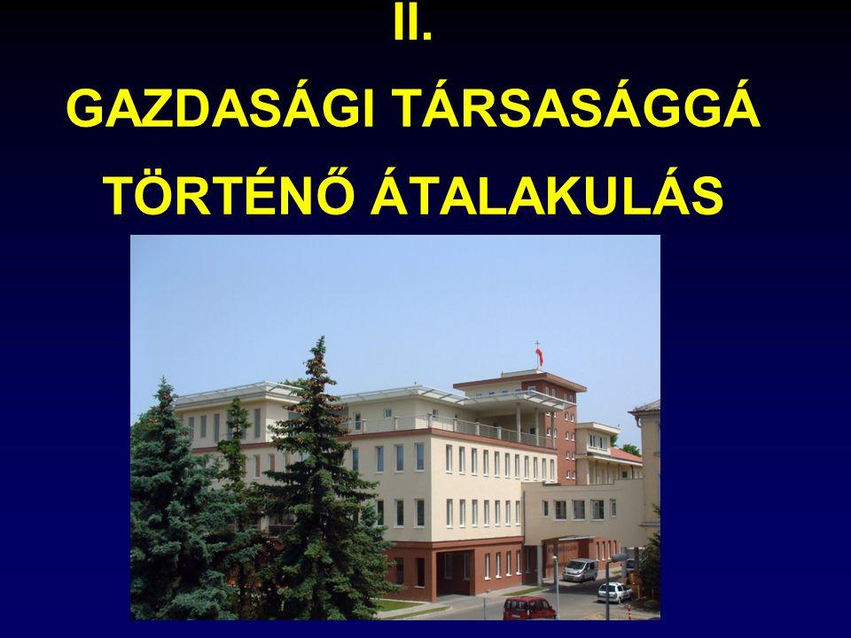II. GAZDASÁGI TÁRSASÁGGÁ TÖRTÉNŐ ÁTALAKULÁS
