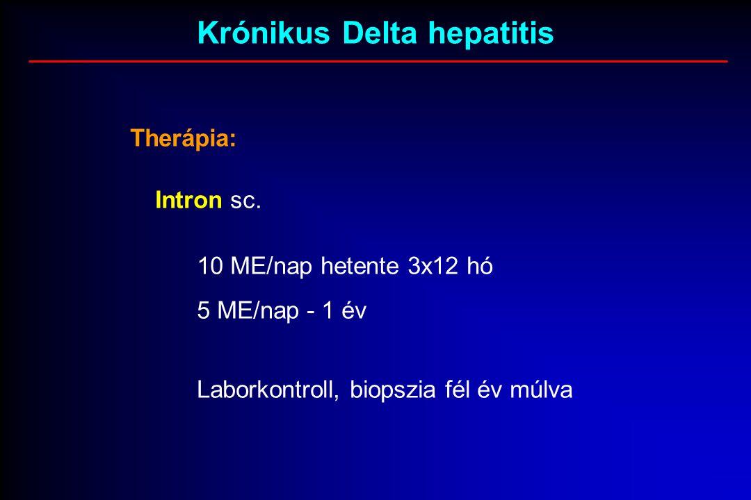 Krónikus Delta hepatitis Therápia: Intron sc.