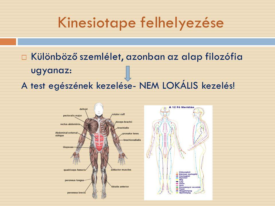 Kinesiotape felhelyezése  Különböző szemlélet, azonban az alap filozófia ugyanaz: A test egészének kezelése- NEM LOKÁLIS kezelés!
