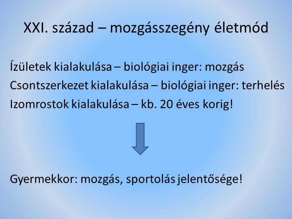 XXI. század – mozgásszegény életmód Ízületek kialakulása – biológiai inger: mozgás Csontszerkezet kialakulása – biológiai inger: terhelés Izomrostok k