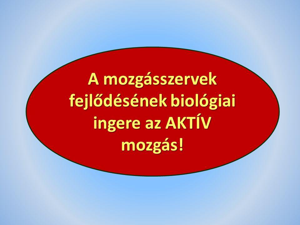 A mozgásszervek fejlődésének biológiai ingere az AKTÍV mozgás!