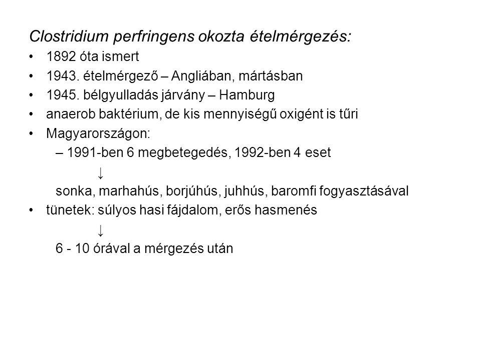 Clostridium perfringens okozta ételmérgezés: 1892 óta ismert 1943.
