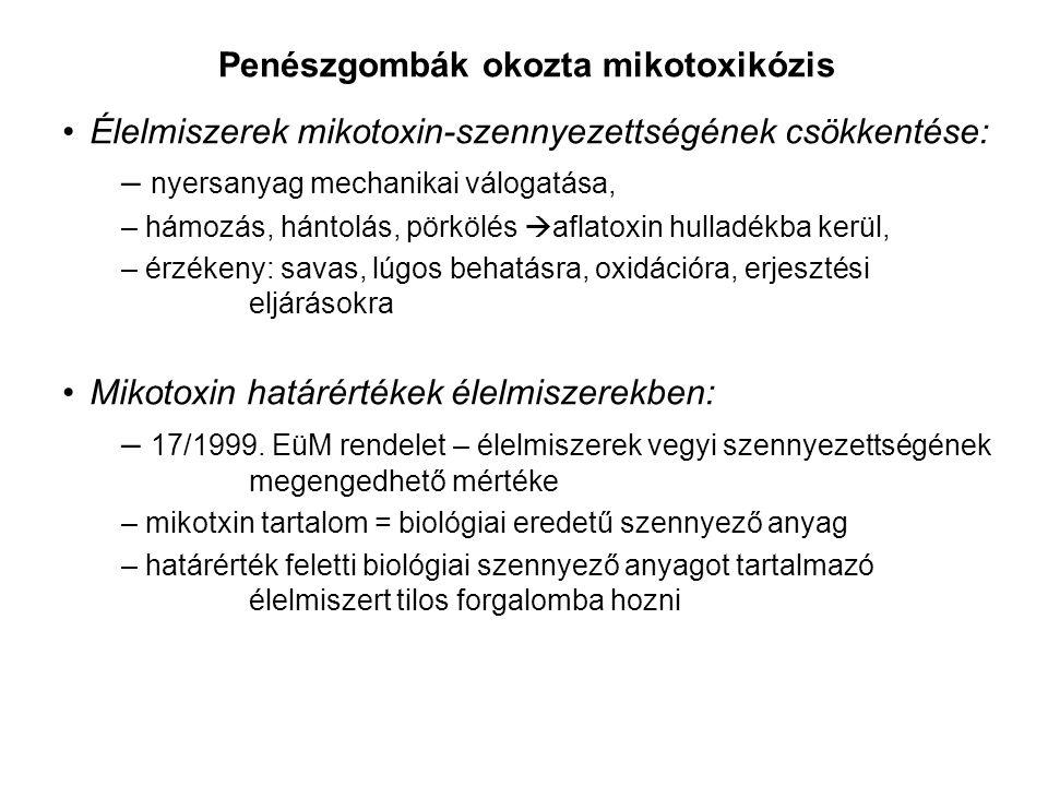 Penészgombák okozta mikotoxikózis Élelmiszerek mikotoxin-szennyezettségének csökkentése: – nyersanyag mechanikai válogatása, – hámozás, hántolás, pörkölés  aflatoxin hulladékba kerül, – érzékeny: savas, lúgos behatásra, oxidációra, erjesztési eljárásokra Mikotoxin határértékek élelmiszerekben: – 17/1999.