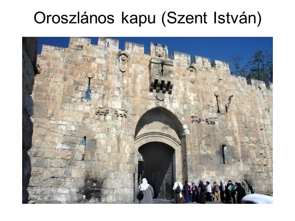 Oroszlános kapu (Szent István)