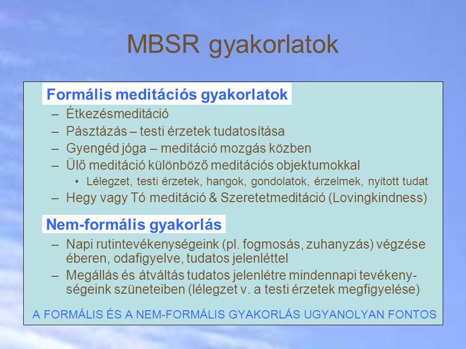 MBSR gyakorlatok –Étkezésmeditáció –Pásztázás – testi érzetek tudatosítása –Gyengéd jóga – meditáció mozgás közben –Ülő meditáció különböző meditációs objektumokkal Lélegzet, testi érzetek, hangok, gondolatok, érzelmek, nyitott tudat –Hegy vagy Tó meditáció & Szeretetmeditáció (Lovingkindness) –Napi rutintevékenységeink (pl.