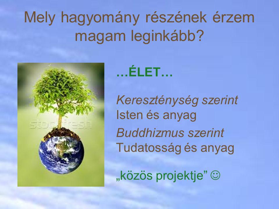 """…ÉLET… Kereszténység szerint Isten és anyag Buddhizmus szerint Tudatosság és anyag """"közös projektje Mely hagyomány részének érzem magam leginkább?"""