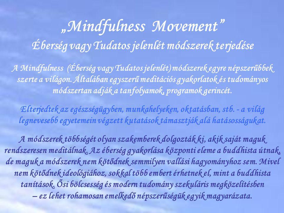 1.Modern mindfulness definíció / tanítás túl leegyszerűsített  Csak tüneti enyhítés szenvedéstől történő megszabadulás helyett  Tiszta megértés, megkülönböztetés, üdvös / nem üdvözítő stb.