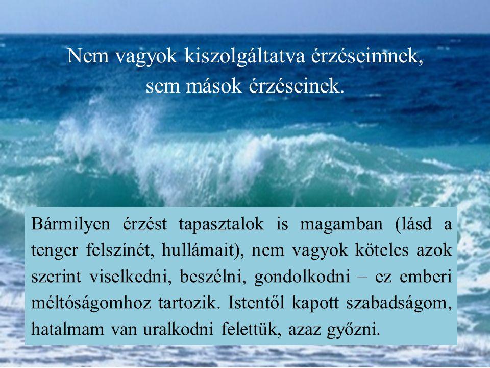 Bármilyen érzést tapasztalok is magamban (lásd a tenger felszínét, hullámait), nem vagyok köteles azok szerint viselkedni, beszélni, gondolkodni – ez emberi méltóságomhoz tartozik.