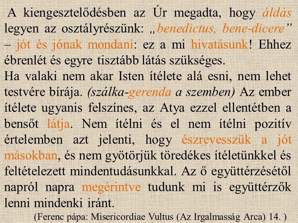 """A kiengesztelődésben az Úr megadta, hogy áldás legyen az osztályrészünk: """"benedictus, bene-dicere – jót és jónak mondani: ez a mi hivatásunk."""