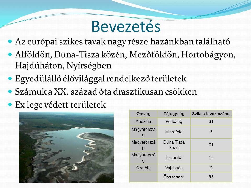 Bevezetés Az európai szikes tavak nagy része hazánkban található Alföldön, Duna-Tisza közén, Mezőföldön, Hortobágyon, Hajdúháton, Nyírségben Egyedülálló élővilággal rendelkező területek Számuk a XX.