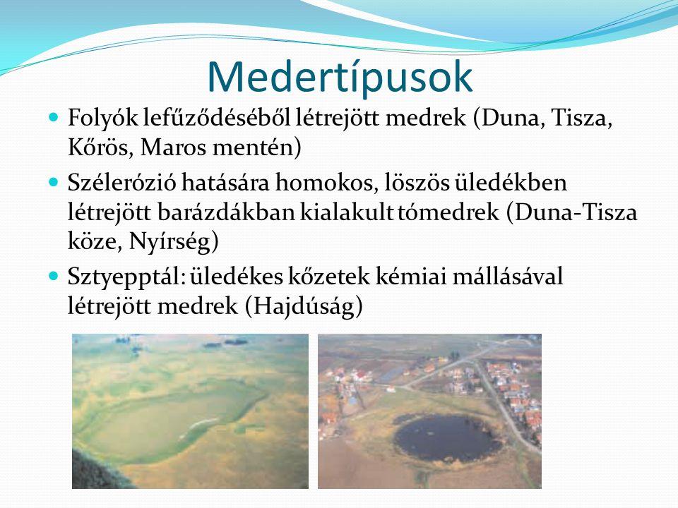 Medertípusok Folyók lefűződéséből létrejött medrek (Duna, Tisza, Kőrös, Maros mentén) Szélerózió hatására homokos, löszös üledékben létrejött barázdákban kialakult tómedrek (Duna-Tisza köze, Nyírség) Sztyepptál: üledékes kőzetek kémiai mállásával létrejött medrek (Hajdúság)