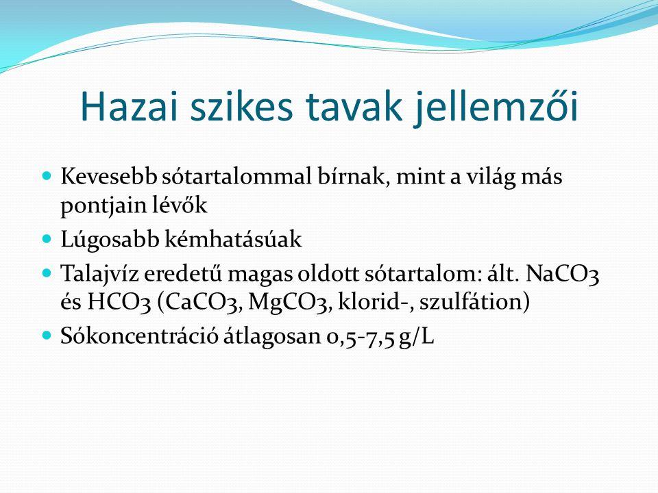 Hazai szikes tavak jellemzői Kevesebb sótartalommal bírnak, mint a világ más pontjain lévők Lúgosabb kémhatásúak Talajvíz eredetű magas oldott sótartalom: ált.
