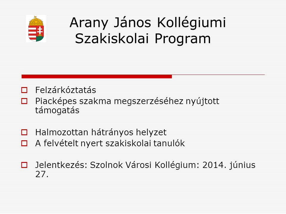 Arany János Kollégiumi Szakiskolai Program  Felzárkóztatás  Piacképes szakma megszerzéséhez nyújtott támogatás  Halmozottan hátrányos helyzet  A f