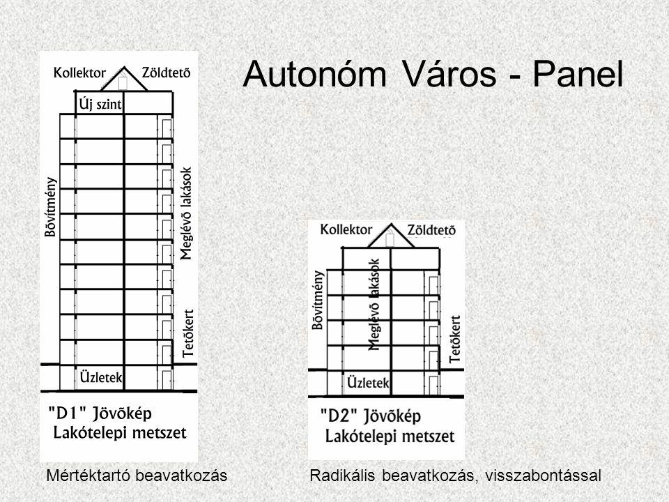 Autonóm Város - Panel Mértéktartó beavatkozásRadikális beavatkozás, visszabontással