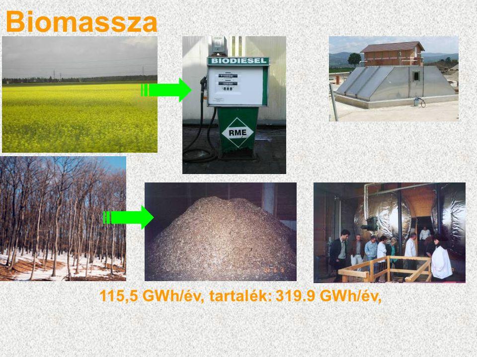 Biomassza 115,5 GWh/év, tartalék: 319.9 GWh/év,