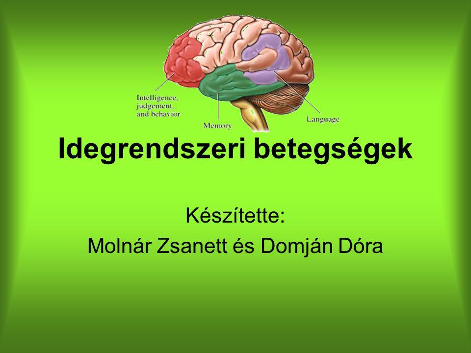 Idegrendszeri betegségek Készítette: Molnár Zsanett és Domján Dóra