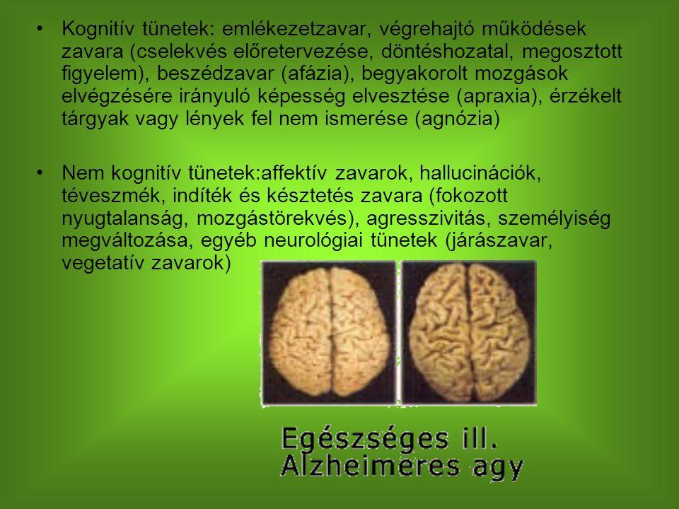 Kognitív tünetek: emlékezetzavar, végrehajtó működések zavara (cselekvés előretervezése, döntéshozatal, megosztott figyelem), beszédzavar (afázia), begyakorolt mozgások elvégzésére irányuló képesség elvesztése (apraxia), érzékelt tárgyak vagy lények fel nem ismerése (agnózia) Nem kognitív tünetek:affektív zavarok, hallucinációk, téveszmék, indíték és késztetés zavara (fokozott nyugtalanság, mozgástörekvés), agresszivitás, személyiség megváltozása, egyéb neurológiai tünetek (járászavar, vegetatív zavarok)