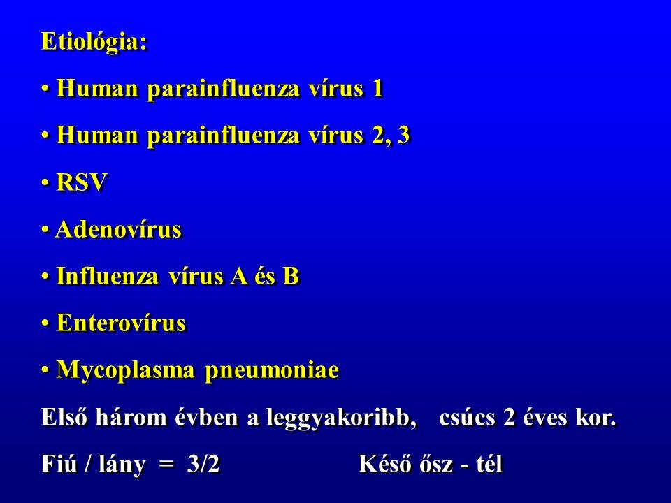 Etiológia: Human parainfluenza vírus 1 Human parainfluenza vírus 2, 3 RSV Adenovírus Influenza vírus A és B Enterovírus Mycoplasma pneumoniae Első három évben a leggyakoribb, csúcs 2 éves kor.
