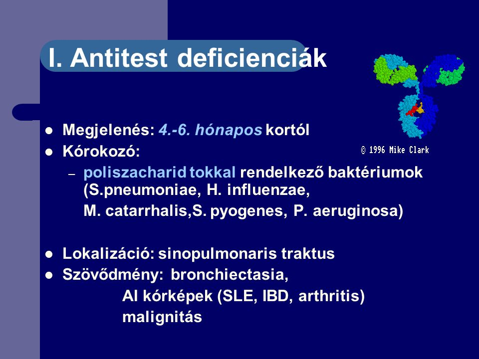 I. Antitest deficienciák Megjelenés: 4.-6.
