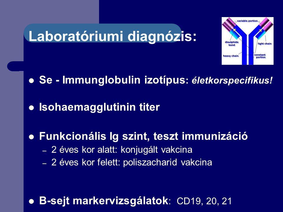 Laboratóriumi diagnózis: Se - Immunglobulin izotípus : életkorspecifikus.