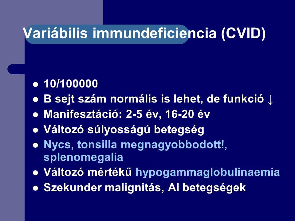 Variábilis immundeficiencia (CVID) 10/100000 B sejt szám normális is lehet, de funkció ↓ Manifesztáció: 2-5 év, 16-20 év Változó súlyosságú betegség Nycs, tonsilla megnagyobbodott!, splenomegalia Változó mértékű hypogammaglobulinaemia Szekunder malignitás, AI betegségek