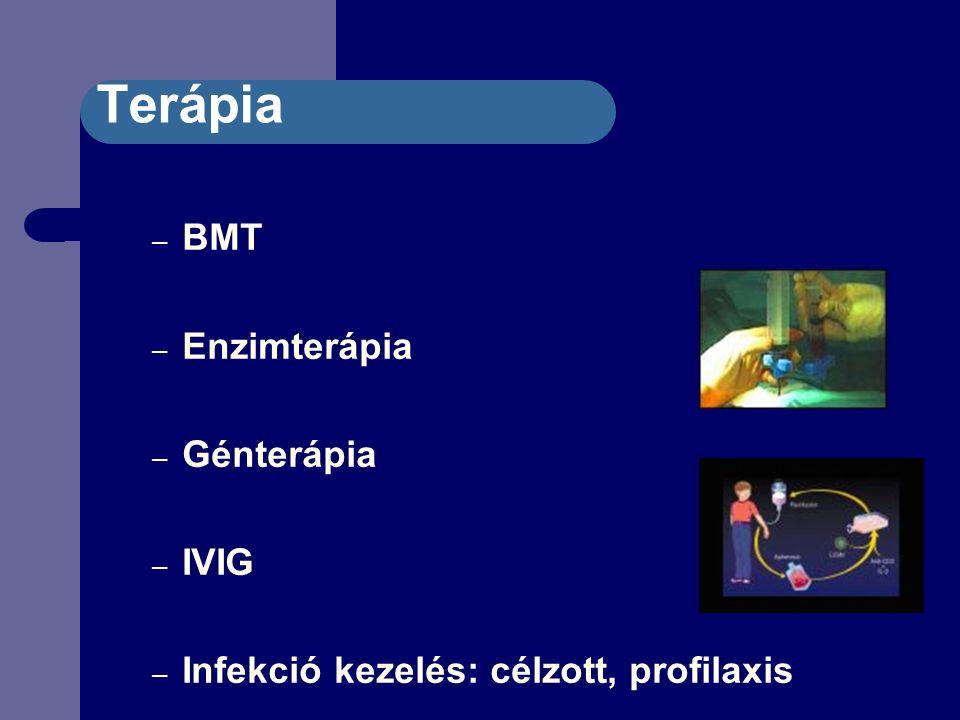 Terápia – BMT – Enzimterápia – Génterápia – IVIG – Infekció kezelés: célzott, profilaxis