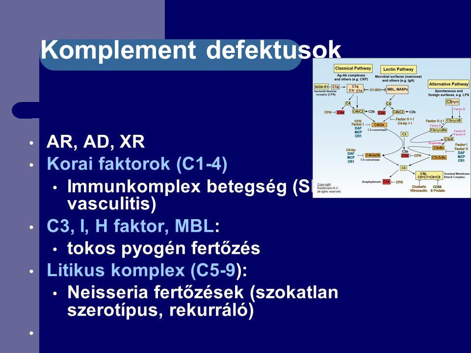 Komplement defektusok AR, AD, XR Korai faktorok (C1-4) Immunkomplex betegség (SLE, RA, vasculitis) C3, I, H faktor, MBL: tokos pyogén fertőzés Litikus komplex (C5-9): Neisseria fertőzések (szokatlan szerotípus, rekurráló)