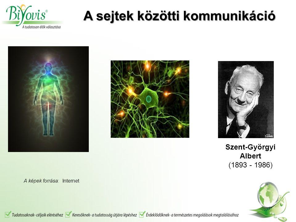 Szent-Györgyi Albert (1893 - 1986) A sejtek közötti kommunikáció A képek forrása: Internet