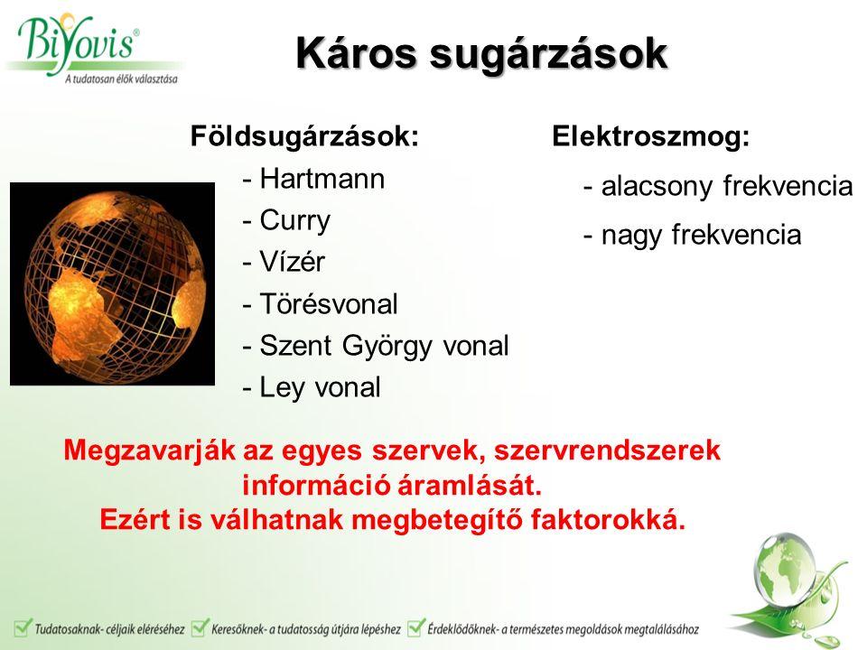 Földsugárzások: - Hartmann - Curry - Vízér - Törésvonal - Szent György vonal - Ley vonal Elektroszmog: - alacsony frekvencia - nagy frekvencia Megzavarják az egyes szervek, szervrendszerek információ áramlását.