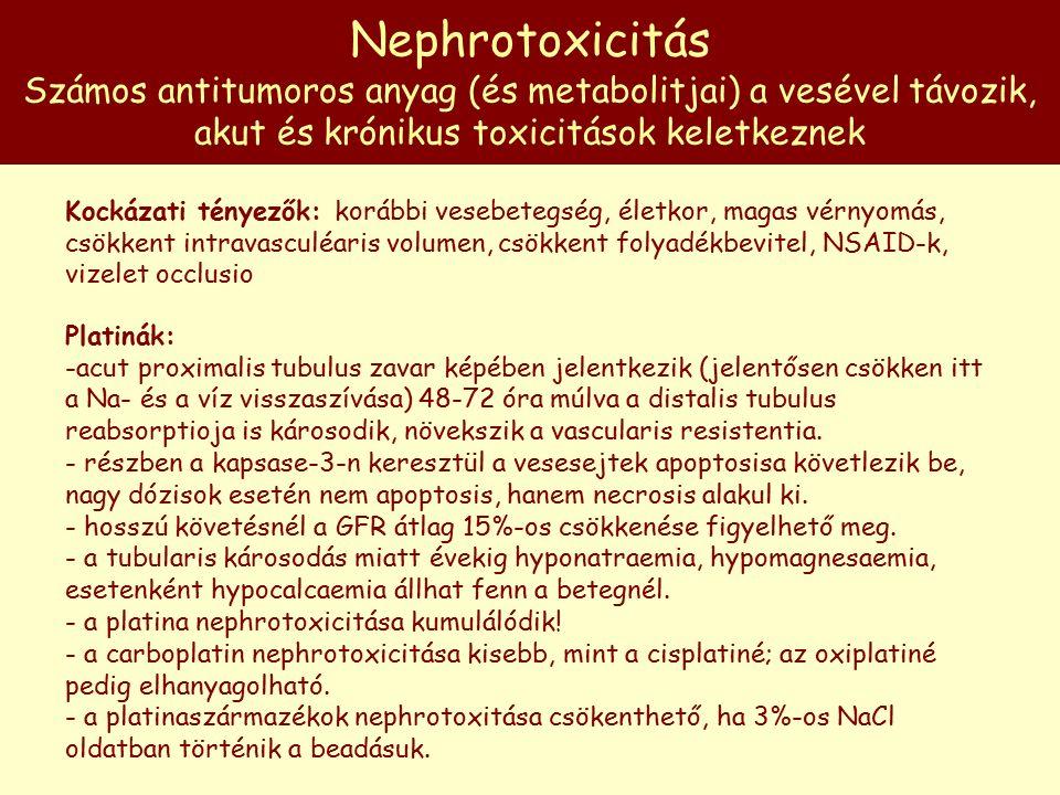 Nephrotoxicitás Számos antitumoros anyag (és metabolitjai) a vesével távozik, akut és krónikus toxicitások keletkeznek Kockázati tényezők: korábbi vesebetegség, életkor, magas vérnyomás, csökkent intravasculéaris volumen, csökkent folyadékbevitel, NSAID-k, vizelet occlusio Platinák: -acut proximalis tubulus zavar képében jelentkezik (jelentősen csökken itt a Na- és a víz visszaszívása) 48-72 óra múlva a distalis tubulus reabsorptioja is károsodik, növekszik a vascularis resistentia.