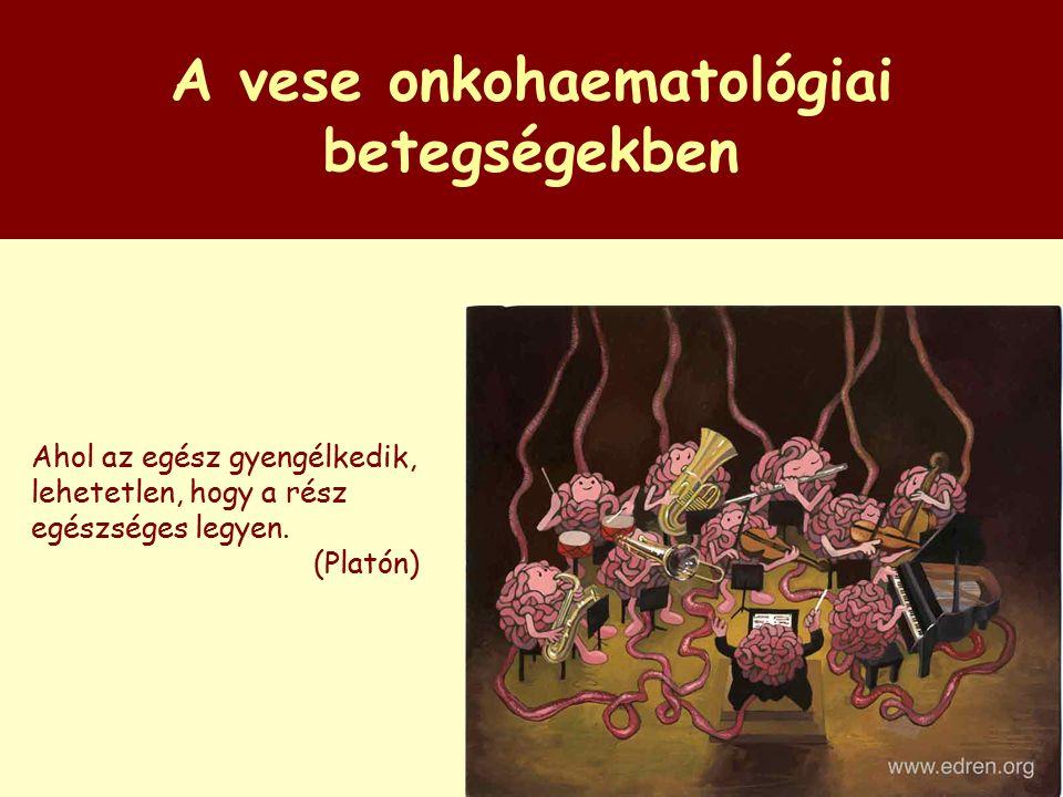 Az onkológiai betegségek és a vese kapcsolata Onko-hematológiai betegségek, melyek vesebetegséget okoznak Veseszövődménnyel járó kezelések Gyógyszerek dózismódosítása Vesefunkció romlás Proteinuria, hematuria, glomerulonephritis, interstitialis nephritis Elektrolit - folyadékháztartás