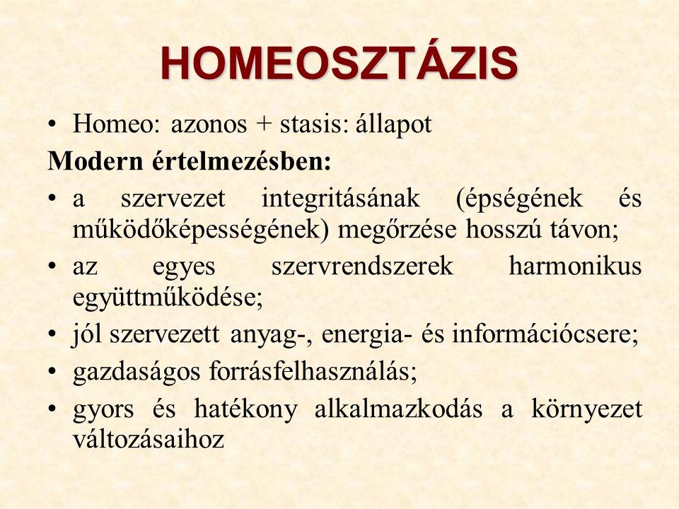 HOMEOSZTÁZIS Homeo: azonos + stasis: állapot Modern értelmezésben: a szervezet integritásának (épségének és működőképességének) megőrzése hosszú távon