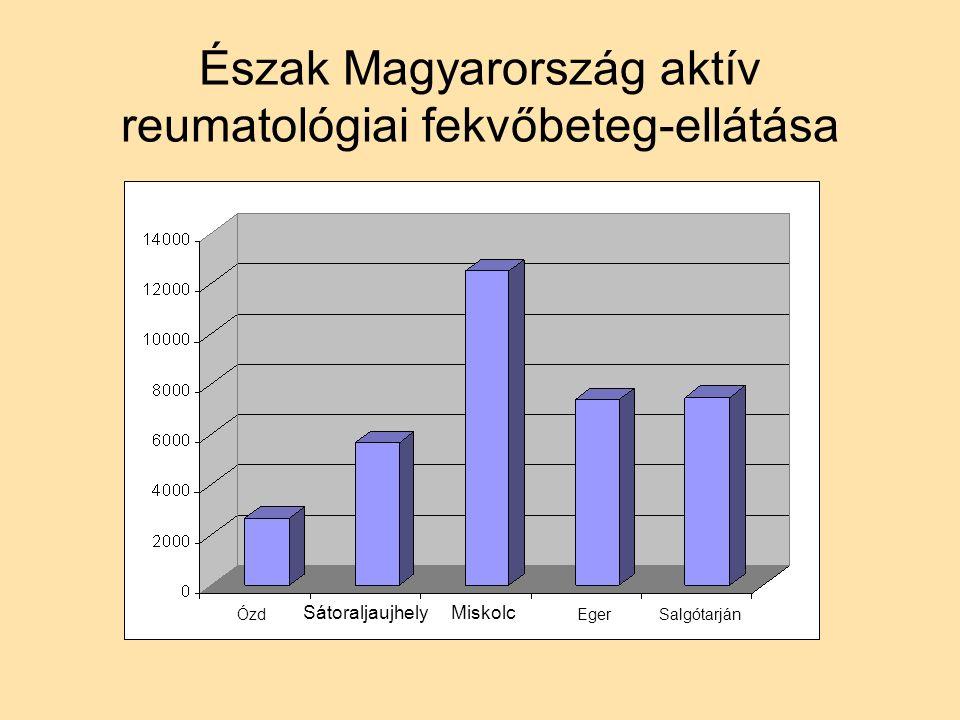 Észak Magyarország aktív reumatológiai fekvőbeteg-ellátása Ózd SátoraljaujhelyMiskolc EgerSalgótarján