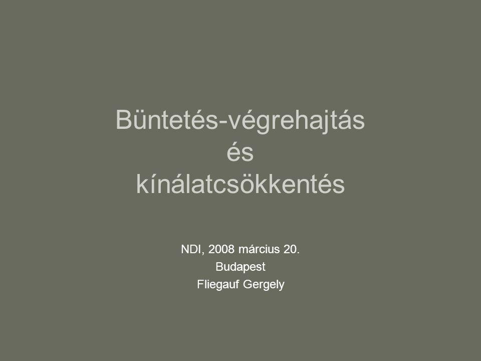 Büntetés-végrehajtás és kínálatcsökkentés NDI, 2008 március 20. Budapest Fliegauf Gergely