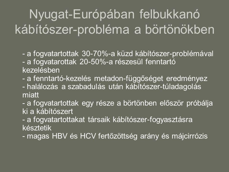 Nyugat-Európában felbukkanó kábítószer-probléma a börtönökben - a fogvatartottak 30-70%-a küzd kábítószer-problémával - a fogvatarottak 20-50%-a részesül fenntartó kezelésben - a fenntartó-kezelés metadon-függőséget eredményez - halálozás a szabadulás után kábítószer-túladagolás miatt - a fogvatartottak egy része a börtönben először próbálja ki a kábítószert - a fogvatartottakat társaik kábítószer-fogyasztásra késztetik - magas HBV és HCV fertőzöttség arány és májcirrózis