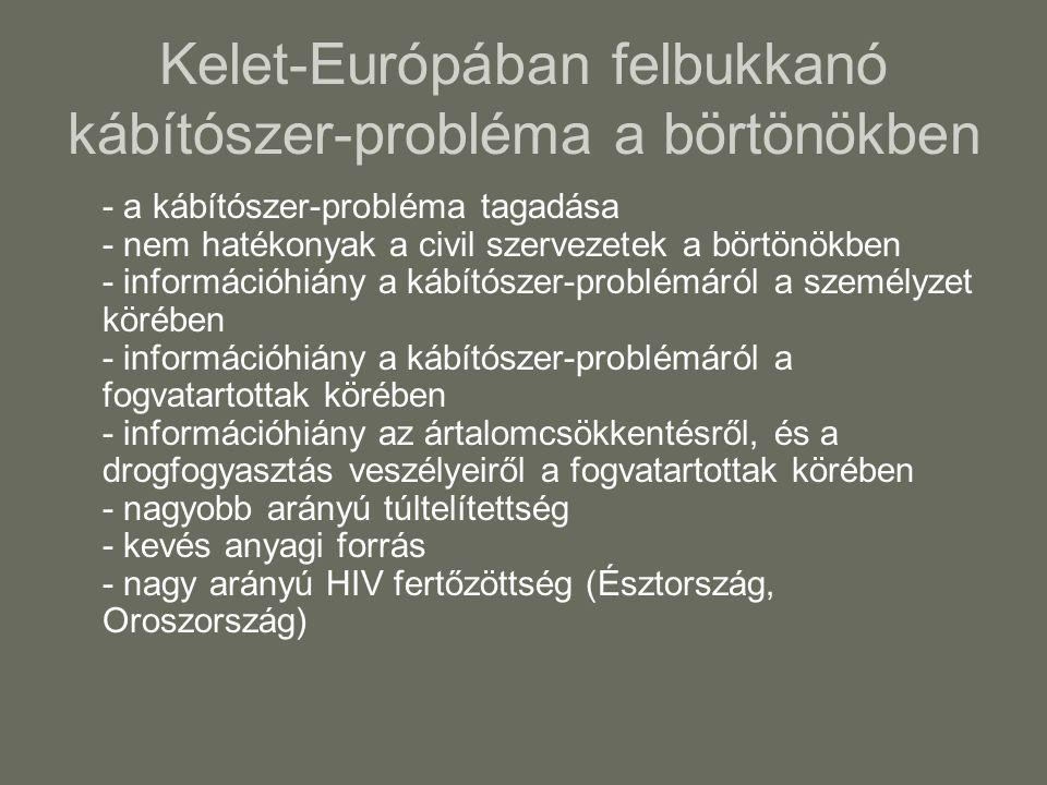Kelet-Európában felbukkanó kábítószer-probléma a börtönökben - a kábítószer-probléma tagadása - nem hatékonyak a civil szervezetek a börtönökben - információhiány a kábítószer-problémáról a személyzet körében - információhiány a kábítószer-problémáról a fogvatartottak körében - információhiány az ártalomcsökkentésről, és a drogfogyasztás veszélyeiről a fogvatartottak körében - nagyobb arányú túltelítettség - kevés anyagi forrás - nagy arányú HIV fertőzöttség (Észtország, Oroszország)