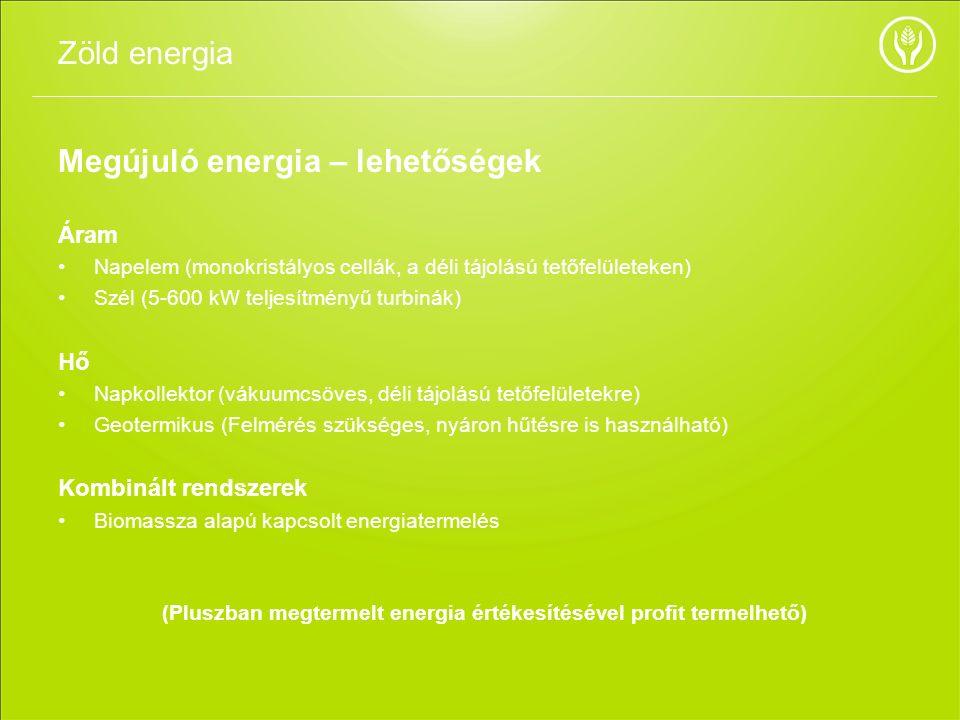 Megújuló energia – lehetőségek Áram Napelem (monokristályos cellák, a déli tájolású tetőfelületeken) Szél (5-600 kW teljesítményű turbinák) Hő Napkoll